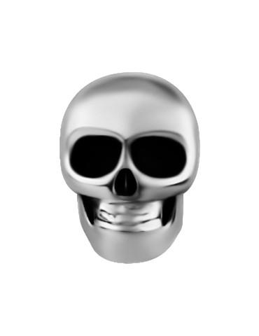 Skull Acier 316L